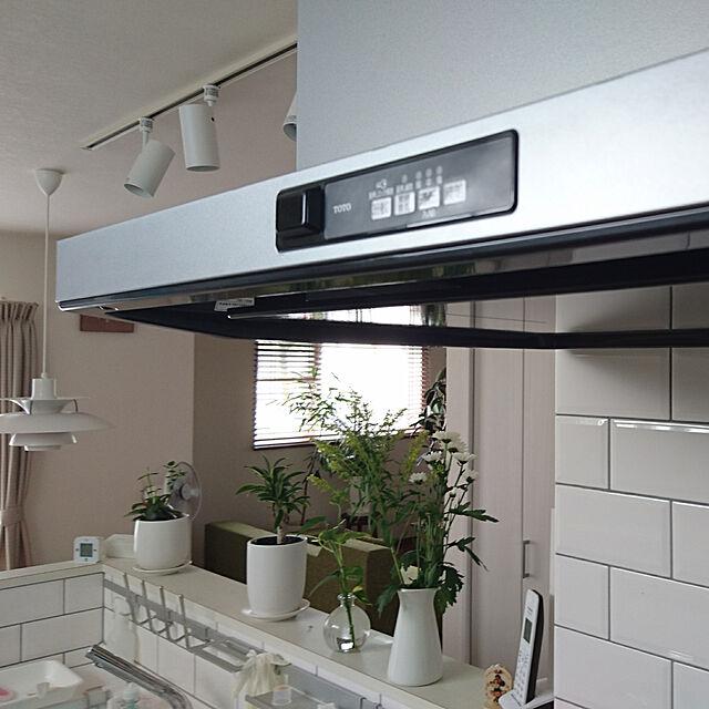 Kitchen/TOTOキッチン/サブウェイタイル/平田タイル/観葉植物...などのインテリア実例