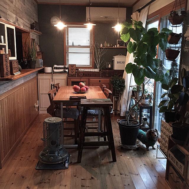 Overview,ブラウン,モモナチュラル,ペンダントライト,無垢の床,ウンベラータ,アラジンストーブ,DIY棚,壁板,壁紙屋本舗,輸入住宅,ミニチュアダックス,わんこと暮らす家,いいね&フォローありがとうございます☆,犬が居る生活,犬の服手作り,ゆっぽん,ブラウン会のインテリア実例   RoomClip (ルームクリップ)