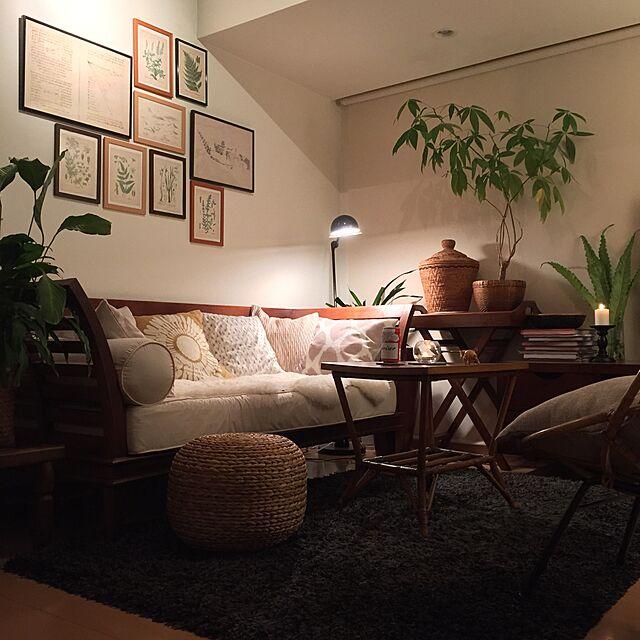 Lounge,観葉植物,ソファー,キャンドル,クッション,間接照明,一人暮らし,バリ,リゾート,パキラ,アンティークテーブル,スパティフィラム,アタバスケット,ベージュ系,アンティークボタニカルアート,お散歩ゾウさん,ミックス&リラックス,アンティークバンブーチェアのインテリア実例 | RoomClip (ルームクリップ)