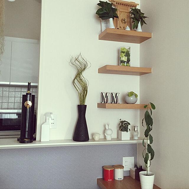 My Shelf/ミッフィーちゃん/神棚/アボカド育ててます。/アボカド栽培...などのインテリア実例