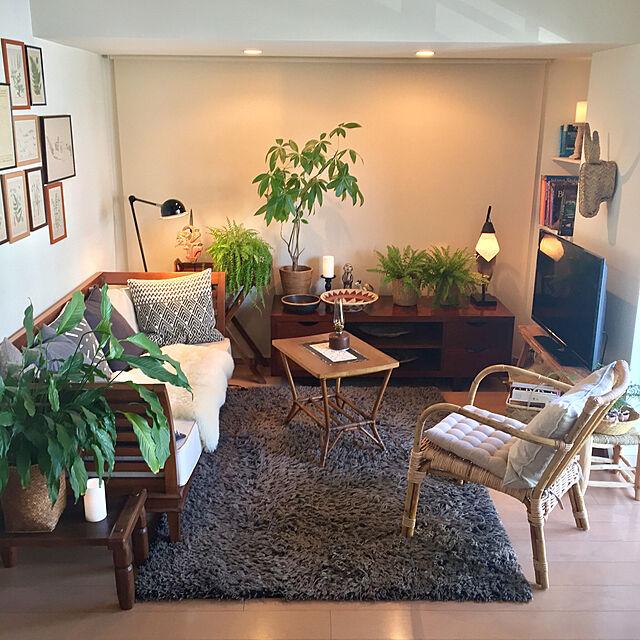 Lounge,観葉植物,アンティーク,ブラウン,間接照明,一人暮らし,バリ,リゾート,シダ,民芸,フォークアート,プリミティブ,ミックス&リラックス,ブラウン会,チーク家具のインテリア実例 | RoomClip (ルームクリップ)