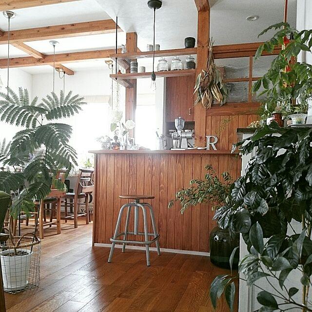 My Shelf,観葉植物,アンティーク,カフェ風,ドライフラワー,水耕栽培,無垢材の床,漆喰壁DIY,着生植物,メンズナチュラル,アズコンストラクション,珈琲のあるあたたかい暮らし,ボタニカルカフェスタイル,COFFEE LOVER,ビターナチュラル,ギターナチュラルのインテリア実例   RoomClip (ルームクリップ)