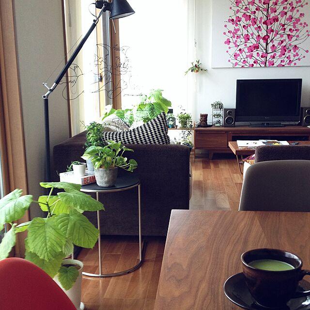 Lounge,イームズ,マリメッコ,シェルチェア,NO GREEN NO LIFE,arflex,抹茶ラテ,artemideのインテリア実例 | RoomClip (ルームクリップ)