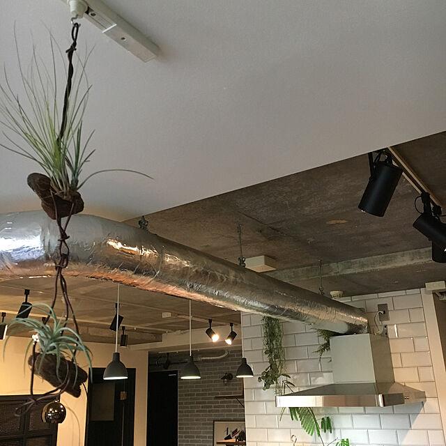 On Walls,無印良品,スポットライト,ルイスポールセン,エアプランツ,サブウェイタイル,NO GREEN NO LIFE,配管むき出し,コンクリートむき出しのインテリア実例 | RoomClip (ルームクリップ)