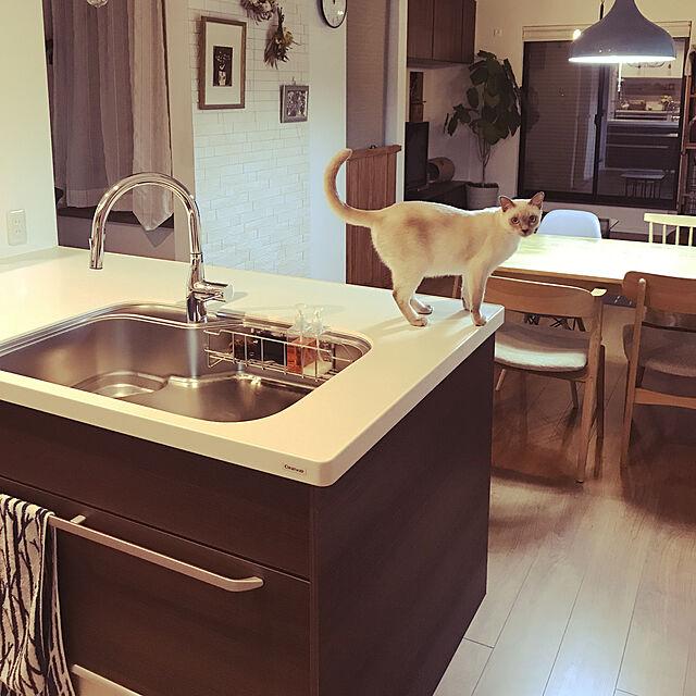 maaayonの家具・インテリア写真
