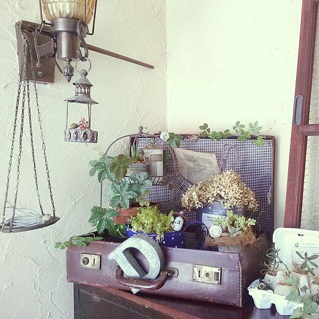 Afternoon Teaと玄関/入り口とピンクのインテリア実例