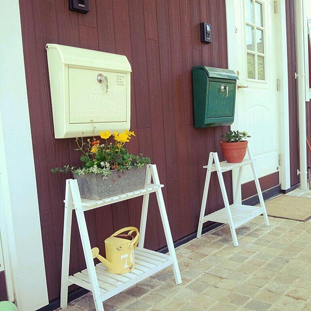 玄関/入り口/salut!/植物のインテリア実例 - 2014-05-03 11:18:27