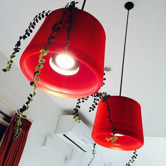 リビング/フェイクグリーン/照明/赤のインテリア実例 - 2014-01-15 19:46:49