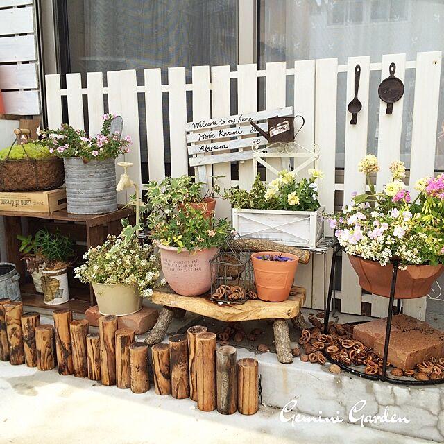 Entrance,植物,DIY,すのこ,くるカラ,Gemiガーデンのインテリア実例 | RoomClip (ルームクリップ)