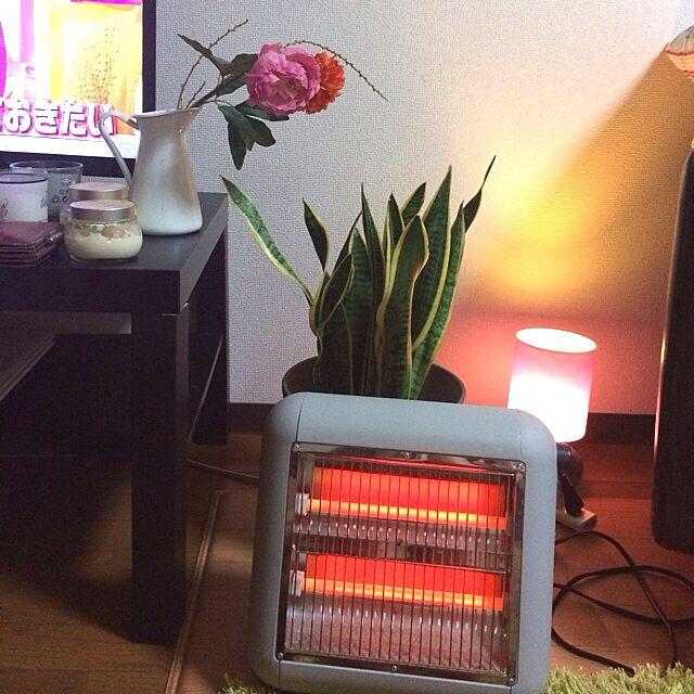 リビング/IKEA/サンセベリア/±0/一人暮らし...などのインテリア実例 - 2014-01-20 23:44:09
