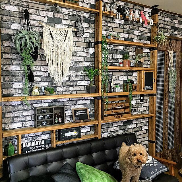 ronmaruの家具・インテリア写真