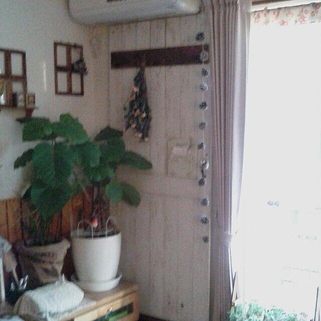 リビング/ドライフラワー/板壁DIYのインテリア実例 - 2014-01-06 16:21:25