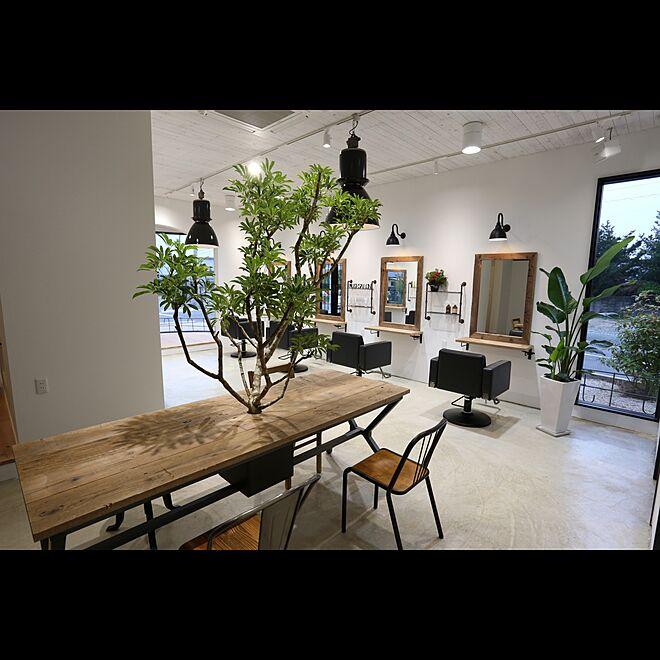 ミラー/照明/植物/カットブース/テーブル...などのインテリア実例 - 2016-11-30 09:22:39