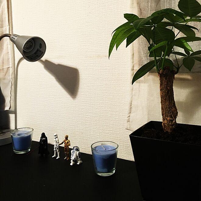 机/plants/室内グリーン/STAR WARS/黒が好き...などのインテリア実例 - 2016-01-24 19:21:30