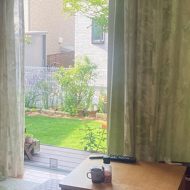 はなのある暮らし/庭/ガーデニング/DIY/芝生の庭...などのインテリア実例 - 2021-06-19 08:45:56