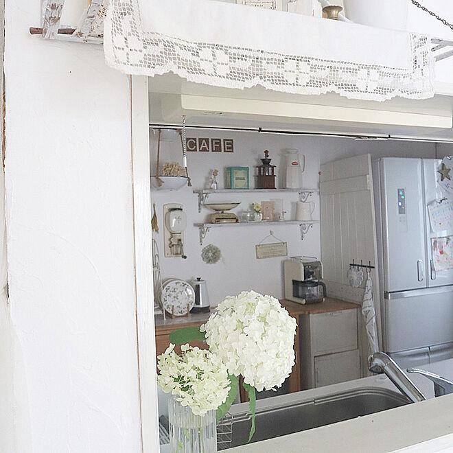 アナベル/キッチン/カフェ風/飾り付け/建売住宅...などのインテリア実例 - 2021-06-22 13:13:44