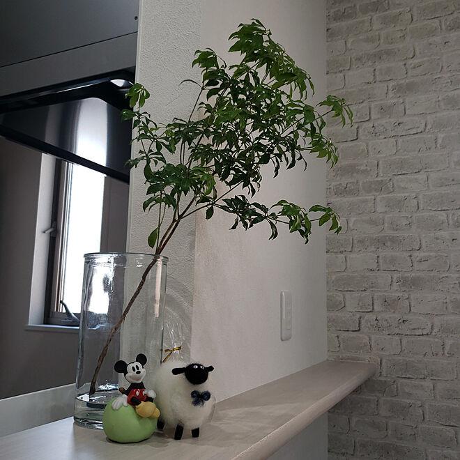 キッチン/RoomClipアンケート/カフェ風/観葉植物/3ヶ月たってもまだまだキレイ...などのインテリア実例 - 2021-07-24 12:04:37