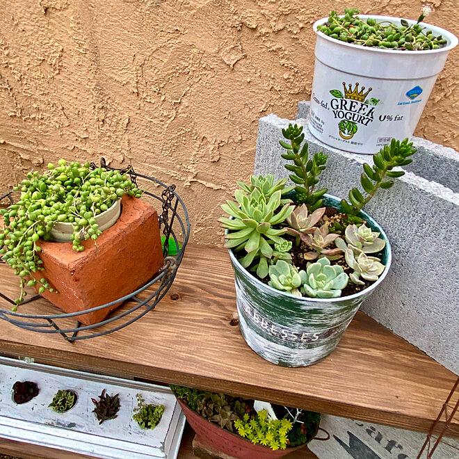 再利用/多肉植物/おうちカフェ/my garden/カフェ風インテリア...などのインテリア実例 - 2021-05-14 00:21:40