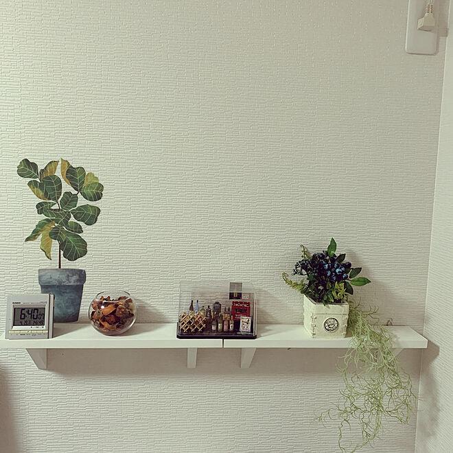 雑貨/観葉植物/100均/壁/天井のインテリア実例 - 2021-04-19 06:40:53