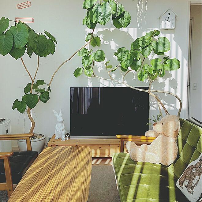 リビング/植物のある生活/グリーン/吹き抜けのある家/シンプル...などのインテリア実例 - 2019-11-13 10:03:01