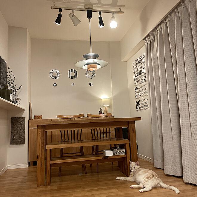 スポットライト/ペンダントライト/ウォールステッカー/壁に貼る爪とぎ/ベルメゾン家具...などのインテリア実例 - 2020-12-12 20:00:43
