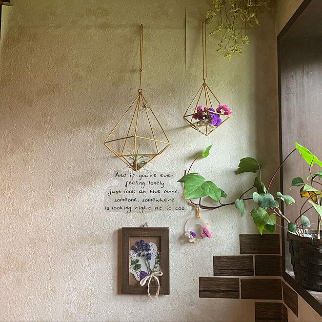 トイレの壁/ハンドメイド雑貨/お花のある暮らし/ボタニカルライフ/季節を楽しむ...などのインテリア実例 - 2019-09-20 18:19:03