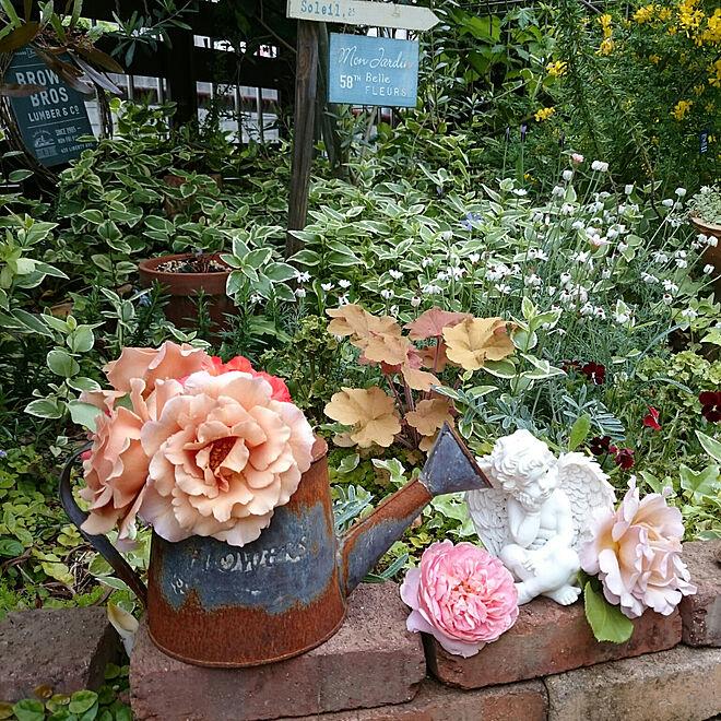 棚/てづくりの庭/建て売りでもお洒落にしたい/DIY/ガーデン...などのインテリア実例 - 2019-05-09 11:59:33
