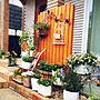 女性33歳の家族暮らし4LDK、庭の花Entranceやダイソーやナチュラルやガーデニングなどに関するMichiさんの実例写真