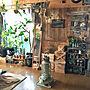 女性、木箱DIYリビングやストーブやドライフラワーやフェイクグリーンなどに関するk.i.brothersさんの実例写真