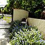 女性家族暮らし、南国リゾート風 プロヴァンス風Entranceや植物や庭やガーデンなどに関するbu-bu-chanさんの実例写真