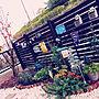 女性家族暮らし4LDK、紅葉Entranceやガーデニングや紅葉や花壇などに関するmomoaobaさんの実例写真