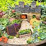 女性家族暮らし4LDK、見てくださってありがとう❁︎My Shelfやハロウィンやセリアや多肉植物寄せ植えなどに関するhamuさんの実例写真