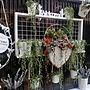 女性家族暮らし、ヴァレンタイン チョコBedroomや多肉植物やグリーンネックレスやハート型などに関するkotarinkoさんの実例写真