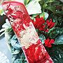 女性42歳の家族暮らし2LDK、赤い花Entranceや癒しの空間やシクラメンや赤い花などに関するh-t-aroma-roomさんの実例写真