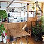 女性家族暮らし3LDK、観葉植物♡Overviewや観葉植物♡やグリーン大好き♡やウンベラータ♡などに関するmaronさんの実例写真