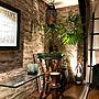 男性45歳の一人暮らし3DK、カフェスタイル寝室や観葉植物やダイソーや100円均一などに関するLACROWAさんの実例写真