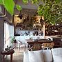 女性44歳の家族暮らし2LDK、H.P.DECOOverviewや観葉植物や照明やアンティーク家具などに関するmaruさんの実例写真