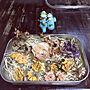 女性63歳の家族暮らし4LDK、バラのドライフラワー♡♪( ´θ`)My Deskやあじさいドライ♡やかえるちゃん♡やどらいふらわー♡などに関するtakakoさんの実例写真