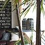 女性家族暮らし、bellemaisondaysMy Shelfや観葉植物やIKEAやサボテンなどに関するcapelさんの実例写真