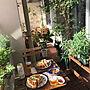 女性家族暮らし2LDK、ハーブのある暮らし玄関/入り口や観葉植物やIKEAやベランダなどに関するnicoleさんの実例写真