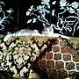 女性一人暮らし1LDK、螺鈿Loungeやソファーやペットやアンティークなどに関するemmyyさんの実例写真