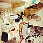 女性42歳の家族暮らし3DK、アイアンキッチンツールKitchenやキッチンツールや100均やDIYなどに関するYUKARIさんの実例写真