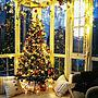 女性39歳の家族暮らし2LDK、クリスマスリビングやIKEAやライトやニトリなどに関するasasaさんの実例写真