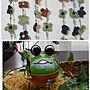 Overview/植物/サボテン/ドライフラワー/ガーランド/モンステラ/ハロウィーン/minne/いいねありがとうございます❤️/monakaちゃんの素敵便/おばちゃんに付き合ってくれてありがとうに関連する部屋のインテリア実例