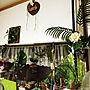 Kitchen/100均/ハンドメイド/DIY/ニトリ/麻紐/マクラメ編み/SURF!!/ブラブラ好きに関連する部屋のインテリア実例