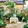 Lounge/ガーデニング/手作りの庭/アイアンフェンス/花のある暮らし/ハーブ大好き/宿根草/雑貨大好き♡/ロザリアンに関連する部屋のインテリア実例