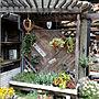 On Walls/ガーデニング/多肉植物/トレリス/ジャンクガーデン/パテーション/お出かけ先/フラワースタンド/ロベリア/バーゴラ/ヘリンボーン風に関連する部屋のインテリア実例