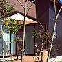Overview/バーチカルブラインド/ガルバリウム/山善/新築一戸建て/ウッドデッキのある暮らしに関連する部屋のインテリア実例