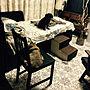 Bedroom/IKEA/レトロ/一人暮らし/デイベッド/ねこと暮らす/せまい部屋/いぬと暮らす/1DK 賃貸/香りのある暮らし/柄が好きに関連する部屋のインテリア実例