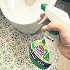 トイレを洗うならこれ☆RoomClipユーザーさんたち愛用のトイレ用洗剤10選